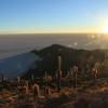 Isla Incahuasi, Bolivia's Salt Flats
